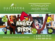Аттракцион Angry Birds Live Ростов-на-Дону