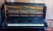 Антикварное пианино J.Becker 1900-x